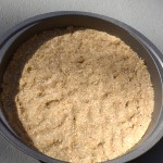 crust-in-9inch-pan-mold