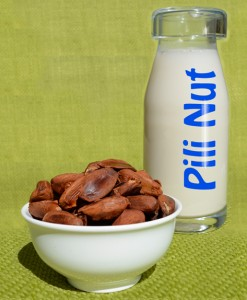 pili nut milk and pili nuts